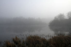 stock photo of boggy  - A lake and the foliage on its shore are shrouded in an eerie - JPG
