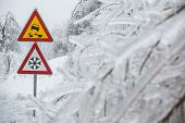 picture of sleet  - Dangerous and icy road with sleet covered trees - JPG