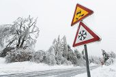 picture of sleet  - Dangerous and icy road with sleet covered fallen trees - JPG