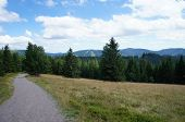 picture of long distance  - Landscape in the Black Forest - JPG