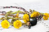 picture of hematite  - Yellow flowers and ornament with hematite on a writing - JPG