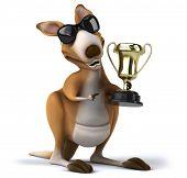 picture of kangaroo  - Fun kangaroo - JPG