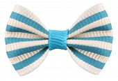 image of striping  - Striped bow tie white blue stripes - JPG