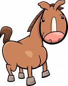 image of foal  - Cartoon Illustration of Cute Baby Horse or Foal Farm Animal - JPG