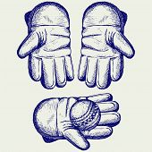 pic of cricket ball  - Cricket ball in a wicket keeping glove - JPG