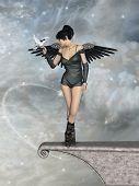 foto of fairyland  - Dark angel in the sky with dove - JPG