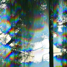 picture of prism  - Trees silhouette and distant city buildings through vintage prism filter abstract colorful light rays - JPG