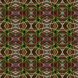picture of bromeliad  - Bromeliad flower seamless pattern background - JPG