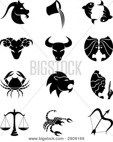 Постер, плакат: Звезды знаки зодиака, холст на подрамнике
