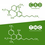 Thc And Cbd Formula. Cannabidiol And Tetrahydrocannabinol Molecule Structure Compound. Medical Marij poster
