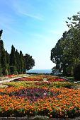 foto of royal botanic gardens  - Botanic garden with flowers and sea. Residence of the Romanian queen by the black sea. Balchik Bulgaria. 