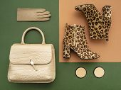 Top View On A Pair Of Trendy Leopard Print Boots, Crocodile Crossbody Bag, Leather Gloves. Feminine  poster