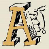 pic of grotesque  - grotesque ABC - JPG