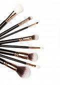 Set Of Brushes For Powder. Powder Brush Set. Cosmetic Brush. Cosmetic Product. Powder Brush Over Whi poster