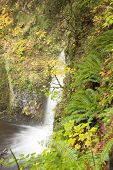 Multnomah Falls in Portland Oregon state, autumn