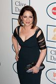 BEVERLY HILLS, CA. - JANUARY 25: Gloria Estefan arrives at the Clive Davis and The Recording Academy