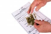 A medical Marijuana user rolls a Joint with rolling papers over his Medical Marijuana certificate in