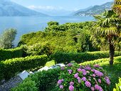 Lake Como (italy) Summer Coast.