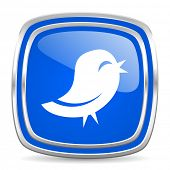 stock photo of yell  - twitter icon - JPG