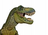 picture of tyrannosaurus  - A Tyrannosaurus Rex Hunts Against a White Background - JPG