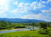 picture of ural mountains  - summer landscape with river between mountains and grazing horses  - JPG