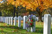 picture of arlington cemetery  - Arlington National Cemetery in Autumn  - JPG