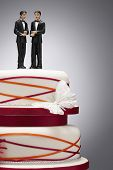 image of gay wedding  - Groom Figurines on Wedding Cake - JPG