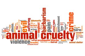 image of animal cruelty  - Animal cruelty issues and concepts word cloud illustration - JPG