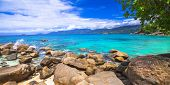 pic of incredible  - incredible nature of Seychelles islands - JPG