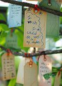 stock photo of wishing-well  - I Wish I Could Do Well In My Studies Wishing Tree - JPG