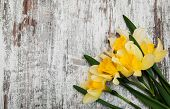 image of daffodils  - Yellow daffodils on a old wooden background - JPG