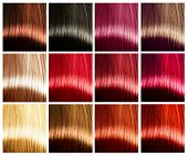 pic of colore  - Hair Colors palette - JPG