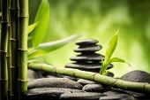 picture of bamboo leaves  - zen basalt stones and bamboo  - JPG