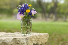 picture of wildflowers  - A bouquet of Texas wildflowers from the Texas Hill Country in a mason jar on a stone wall - JPG