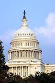 pic of capitol building  - the building of us capitol in washington dc - JPG
