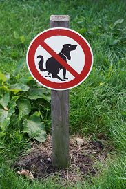 stock photo of pooping  - prohibition sign no dog pooping on lawn - JPG