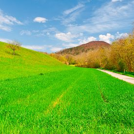 pic of farmhouse  - Asphalt Path Leading to the Farmhouse in the Swiss Alps - JPG