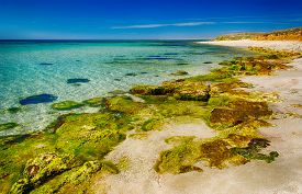 picture of paysage  - seascape shore with clear water and rocks covered with algae in transparent water - JPG