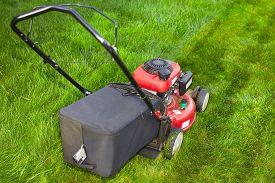 picture of grass-cutter  - Lawn mower cutting green grass - JPG