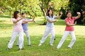 foto of tai-chi  - A group of asian ladies exercising in the park - JPG
