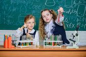 We Love Science. School Children Performing Experiment In Science Classroom. Little Girls Scientists poster