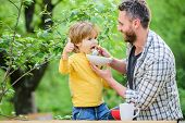 Family Enjoy Homemade Meal. Father Son Eat Food And Have Fun. Little Boy And Dad Eating. Nutrition F poster