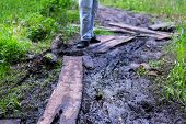 Road Grooves Filled With Water And Mud. Off Road Trails. Man Walk Along The Forest Trail. poster
