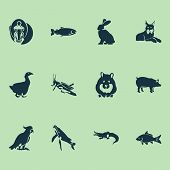 Fauna Icons Set With Carp, Goose, Salmon And Other Mantis Elements. Isolated Vector Illustration Fau poster