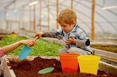 Little Boy. Little Boy Work In Greenhouse. Little Boy Gardener Play With Soil. Little Boy Needs Help poster