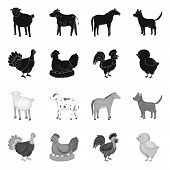 Isolated Object Of Breeding And Kitchen  Icon. Collection Of Breeding And Organic  Stock Vector Illu poster