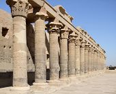 image of isis  - a row of ancient stone columns at the temple of Isis in Egypt - JPG