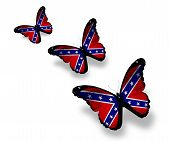 picture of rebel flag  - Three Confederate Rebel flag butterflies isolated on white - JPG