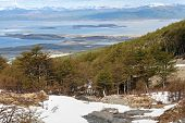 picture of tierra  - Beautiful landscape with snow and trees from Tierra del fuego - JPG