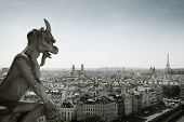 stock photo of gargoyles  - The Gargoyle of Notre Dame looking out over Paris - JPG